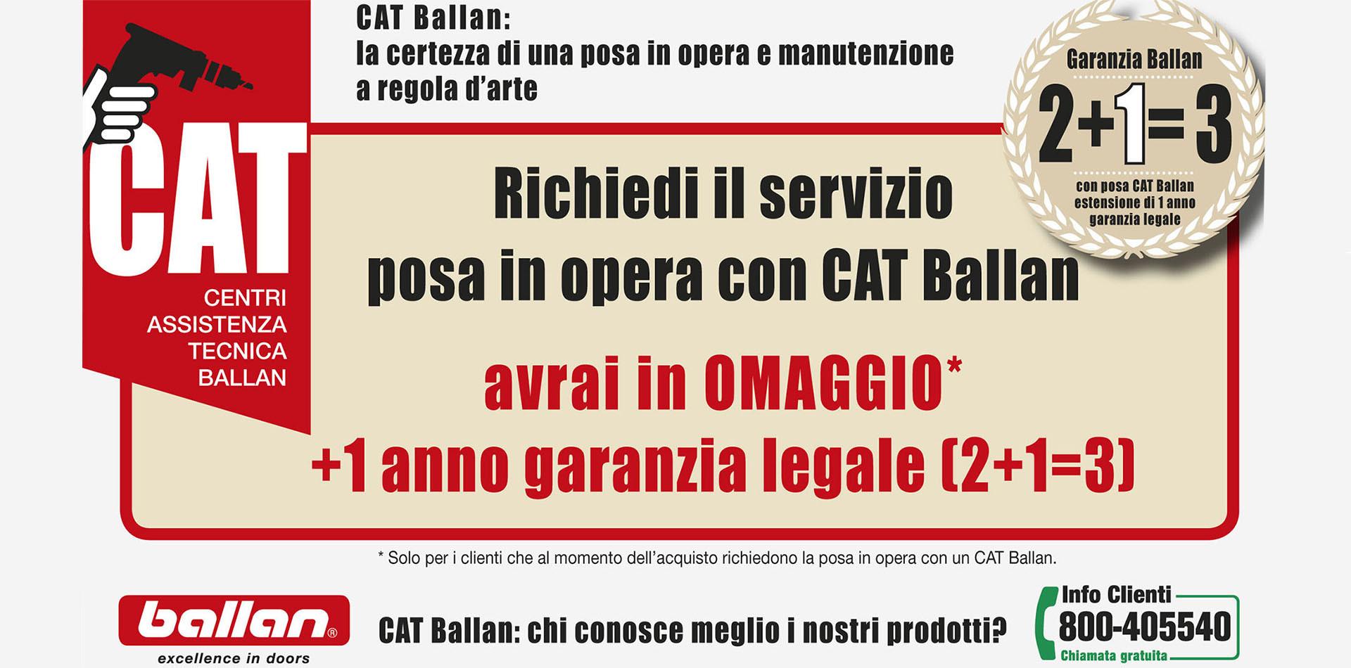 webcatballan.jpg